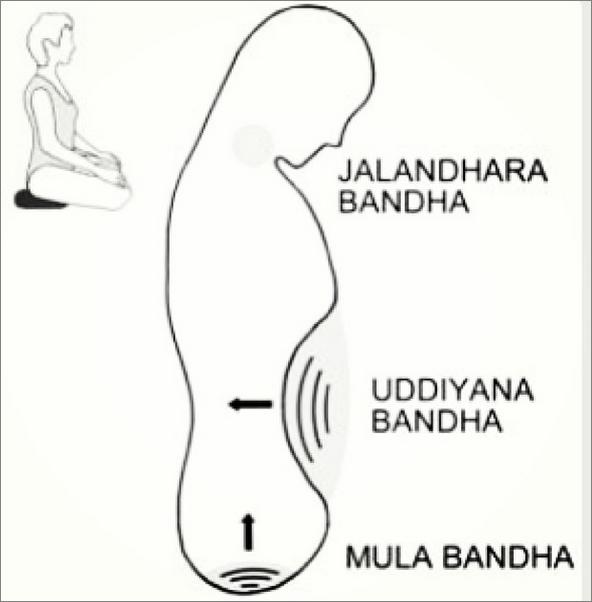 Mula Bandh